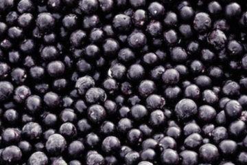 Heidelbeeren